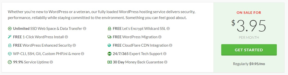 GreenGeeks WordPress Hosting Plan